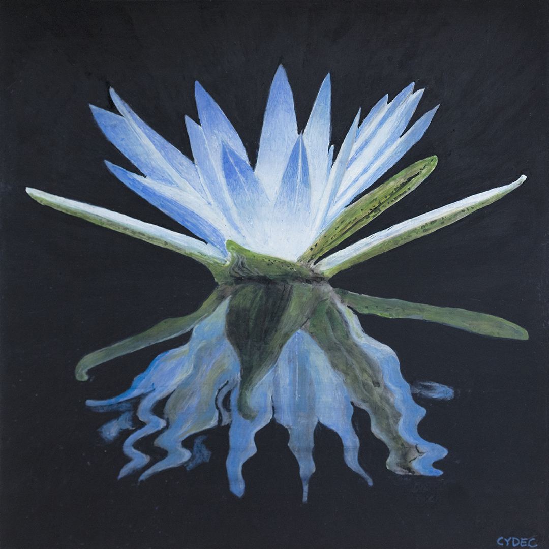 """<em>Blue Lotus of the Nile</em>, 8x8"""""""