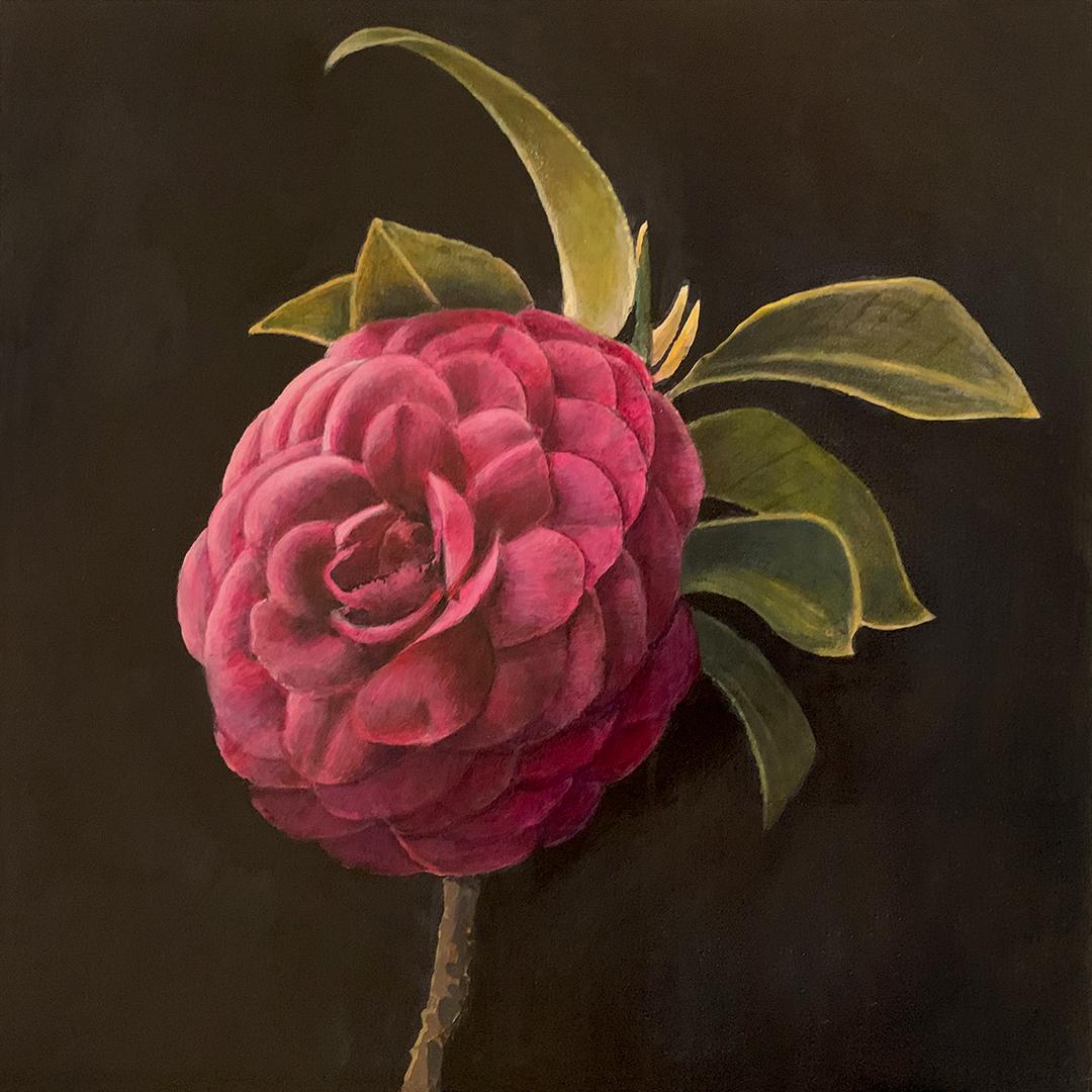 """<em>Camellia</em>, 8x8"""""""